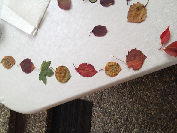 Blätter-gelegt