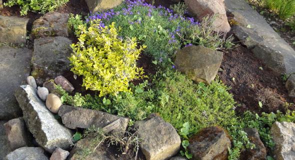 Gartengestaltung leicht gemacht teil 2 wohncore wohncore - Gartengestaltung leicht gemacht ...